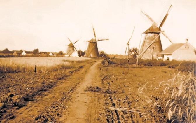 МЕСТО ГДЕ ИГРАЈУ ВИЛЕ Воденице, суваче и ветрењаче су обележиле једну дугу епоху, нарочито у Банату, који је од памтивека био житница