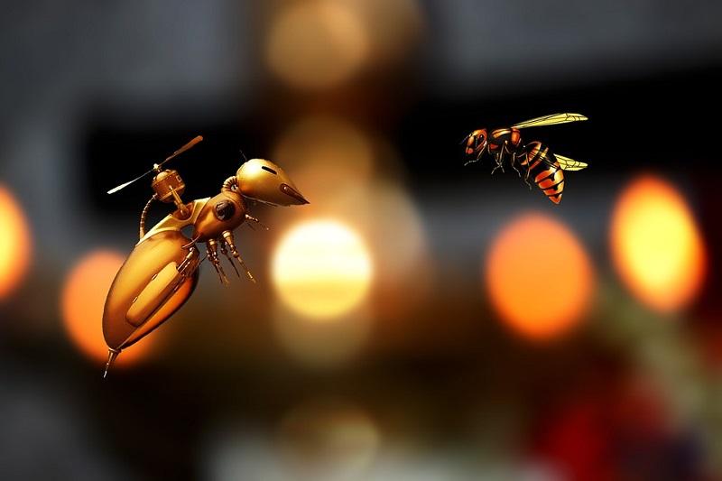 ŠTA RADITI U PČELINJAKU