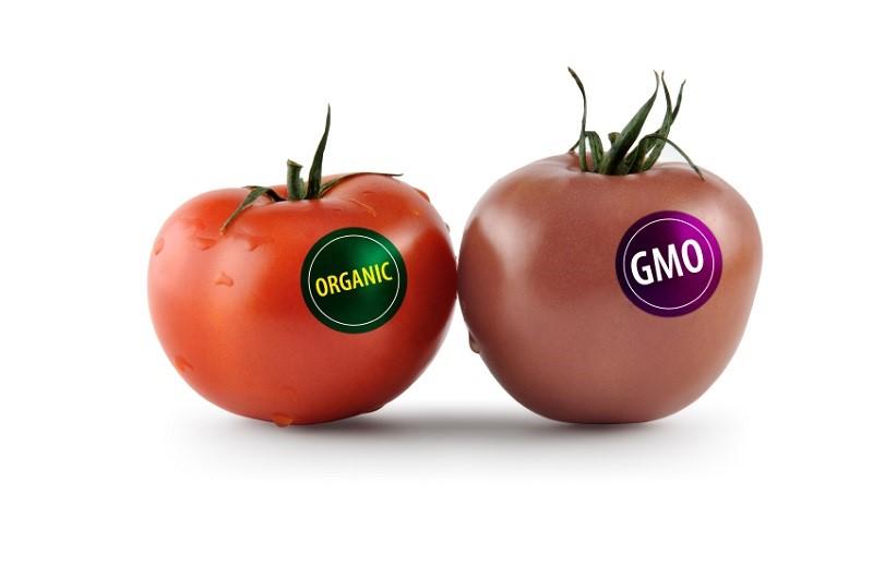KAKO IZGLEDA KONTROLA GMO U SRBIJI?